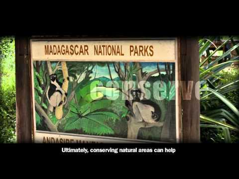 Madagascar Climate Change