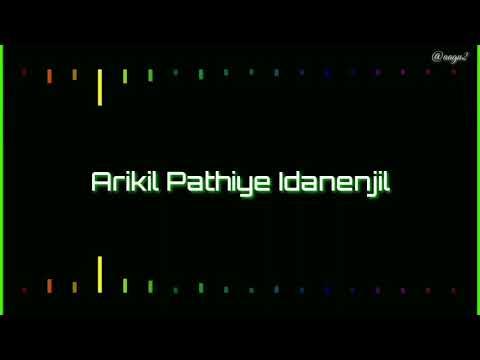 Arikil Pathiye Idanenjil | Lyrics Video