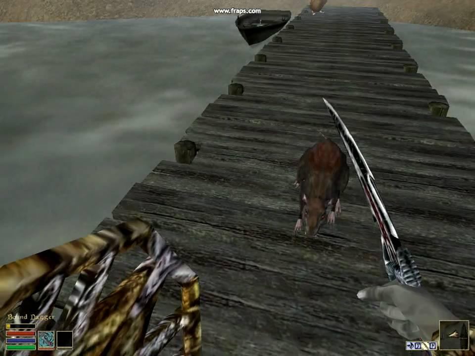 Morrowind Epic Rat Battle Youtube