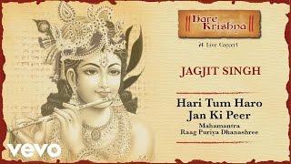 Hari Tum Haro Jan Ki Peer - Live Concert | Jagjit Singh Bhajans