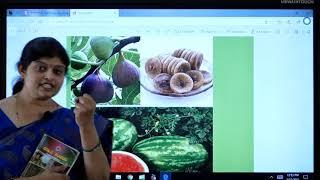 I PUC | Kannada | ಮಗು ಮತ್ತು ಹಣ್ಣುಗಳು ಪಧ್ಯ- 02