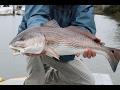 Isle of Palms Saltwater Fishing