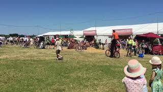 Stilt Bicycle - Eroica