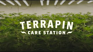 Terrapin Care Station 2021