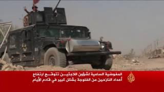 مقتل العشرات من القوات العراقية بالفلوجة والرمادي