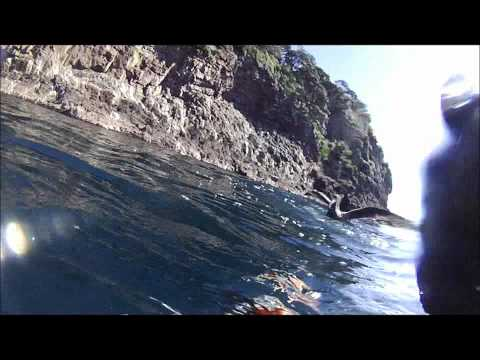Spearfishing New Zealand:  Winter dive at the Alderman Islands