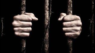 Вот почему в голландских тюрьмах не хватает заключенных
