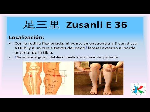 """Zusanli E 36: """"LOS TRES CUN DEL PIE"""" - Localizacion Y Aplicaciones Con Moxibustion."""