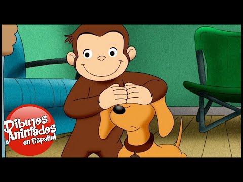 Jorge El Curioso En Español 🐵 Hundley Un Perro Grande🐵 Capitulos Completos Del Mono Jorge