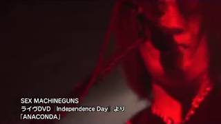 """Latest Live DVD """"Independent Day """" !!! http://www.sexmachineguns.co..."""