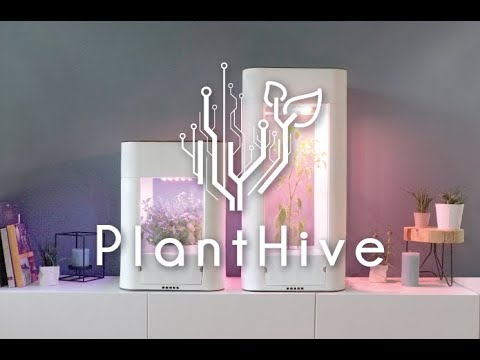Discover PlantHive - The Smart Garden