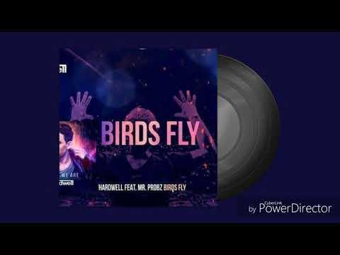 Hardwell (feat Mr. Probz) - bird fly (M&M Remix) [Club Edit]