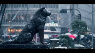 【4K】Snow 60p to 24p Slow Motion GH5 【Shibuya/渋谷スクランブル交差点】 thumbnail