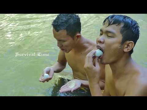 Primitive Technology: Research Goose Nest and Steal Goose's Eggs For Food In Forest