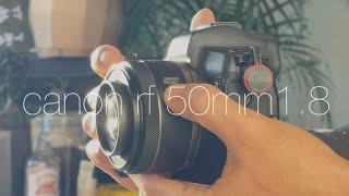캐논 RF50mm1.8 드디어 R 바디에 렌즈캡이 될 …