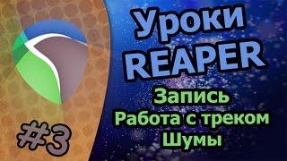 Уроки Reaper - [Запись/Работа с треком/Шумы]