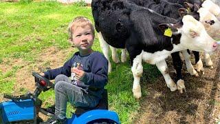 Синий трактор животные на ферме