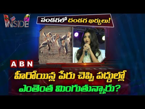 Scam behind celebrities appearance in Flamingo Festival at Nellore | Inside | ABN Telugu