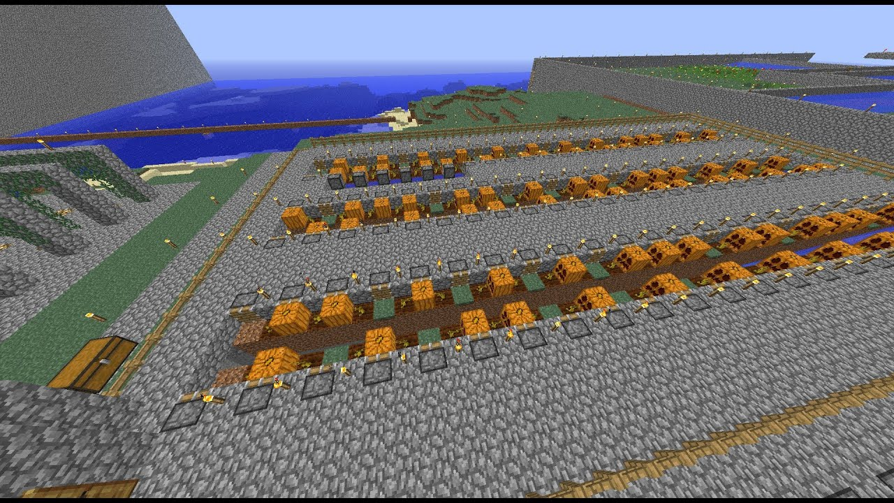 pumpkin farm minecraft