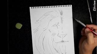 Видео урок - Рисунок карандашом (ЛЕВ) How to Draw a Lion