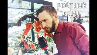 """Программа """"Школьный допрос"""": Космонавты, Отечественная война и Меладзе"""