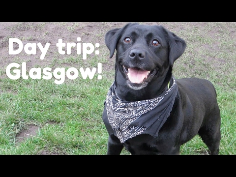 DAY IN GLASGOW | eating out vegan in Picnic and Mono 🐶