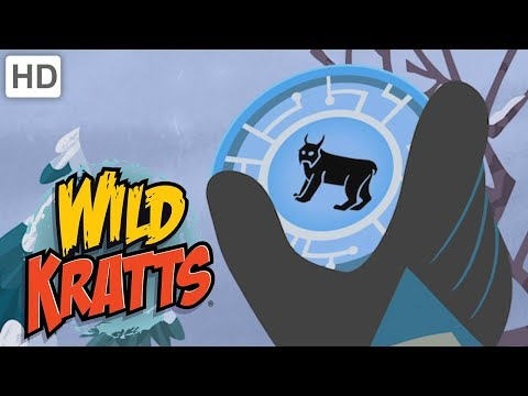 Wild Kratts 🐵 Furry Friends Creature Powers | Kids Videos