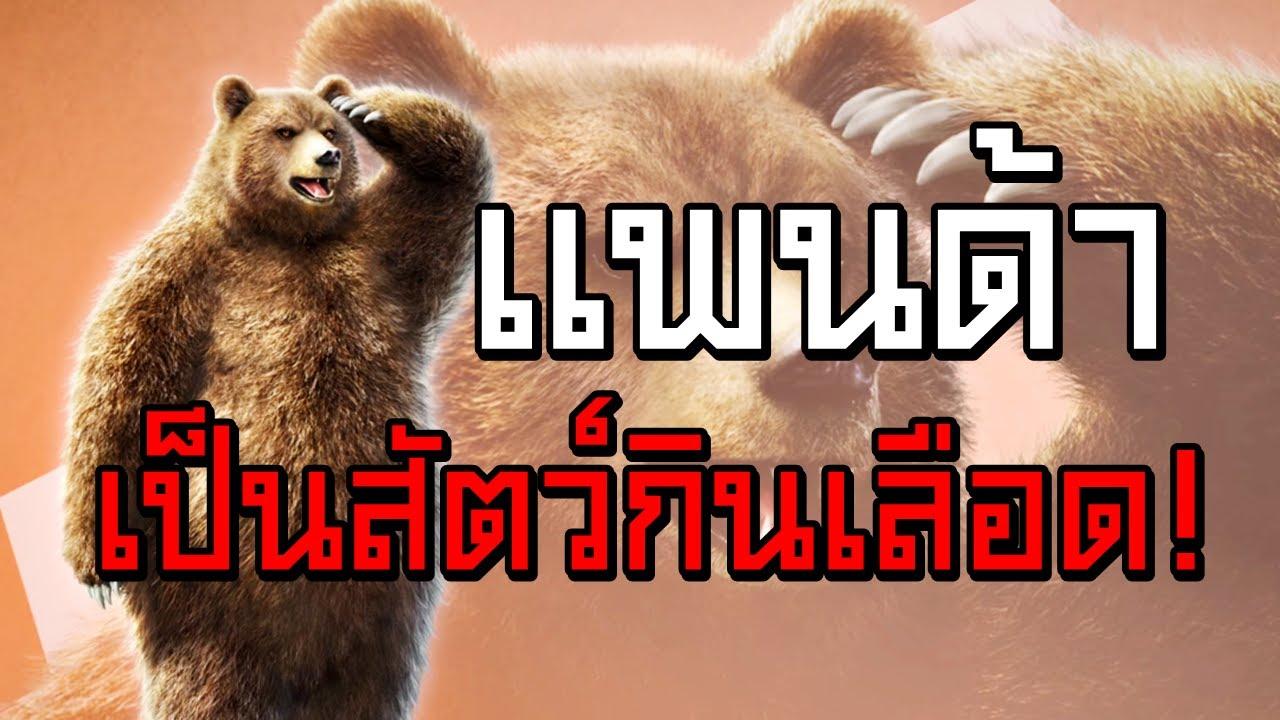 หมีแพนด้า เป็นสัตว์กินเลือด!! - Tekken 7 #1