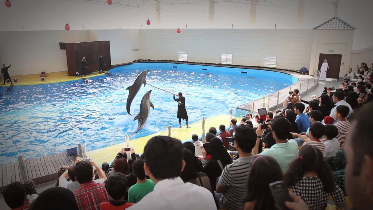 Fakieh Aquarium Jeddah - TV Commercial ????? ???? ...