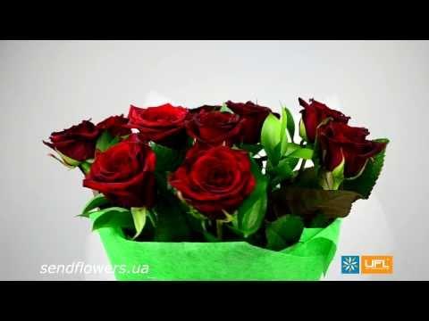 Красивый букет цветов из белых гербер с эхеверией