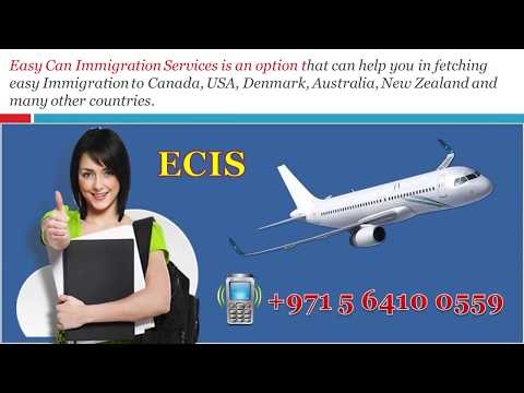 Easy Can Immigration Services Providing You with Smooth Foreign Trips