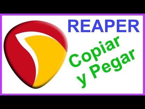 REAPER:Copiar Cortar y Pegar Items en la misma posición pero Pista Distintas
