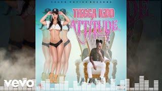 TRIGGA KIDD - Attitude ( Audio) Explicit
