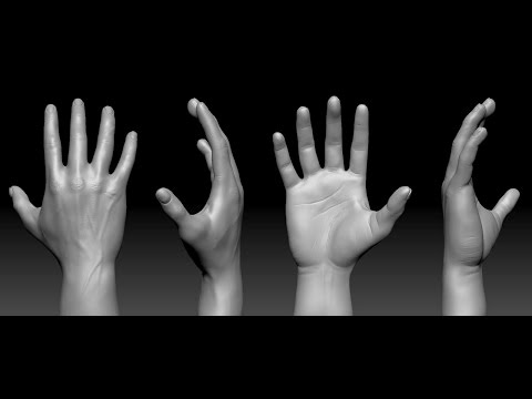 How to Sculpt Hands and Feet -  Quick and Easy