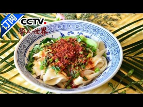 《华人世界》 20170203 | CCTV-4