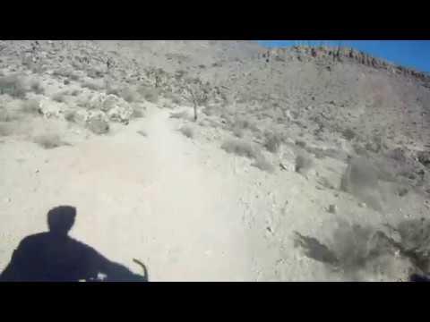 Fun today in Blue Diamond Mustang Ranch