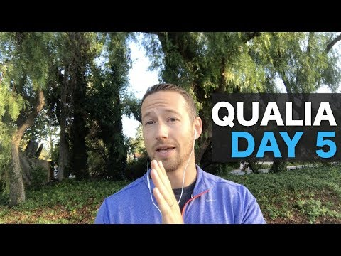 Qualia Nootropic Review: Day 5