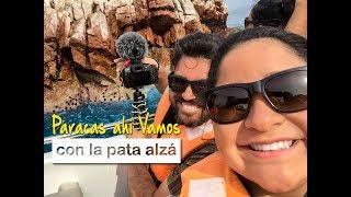 ¡Paracas Ahí Vamos! (Segundo día Perú)