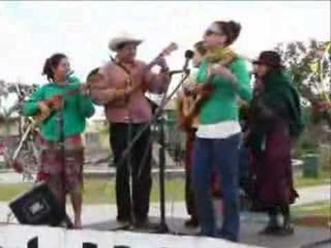 """La Musica Son Jarocho """"Senior Presidente"""""""