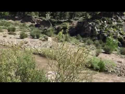 Walker river