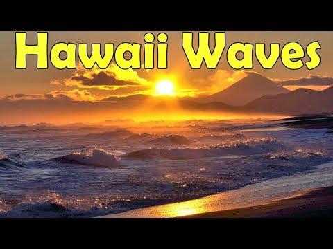 🎧 Hawaii Life – Relaxing Beach Waves Sounds | Ambient Noise for Sleep & Relaxation, @Ultizzz day#37