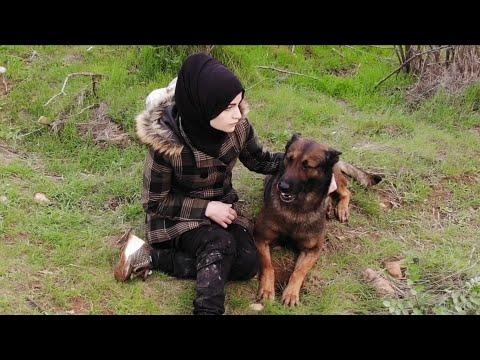 خطف في غابات تركيا .. الفيديو الثالث والاخير
