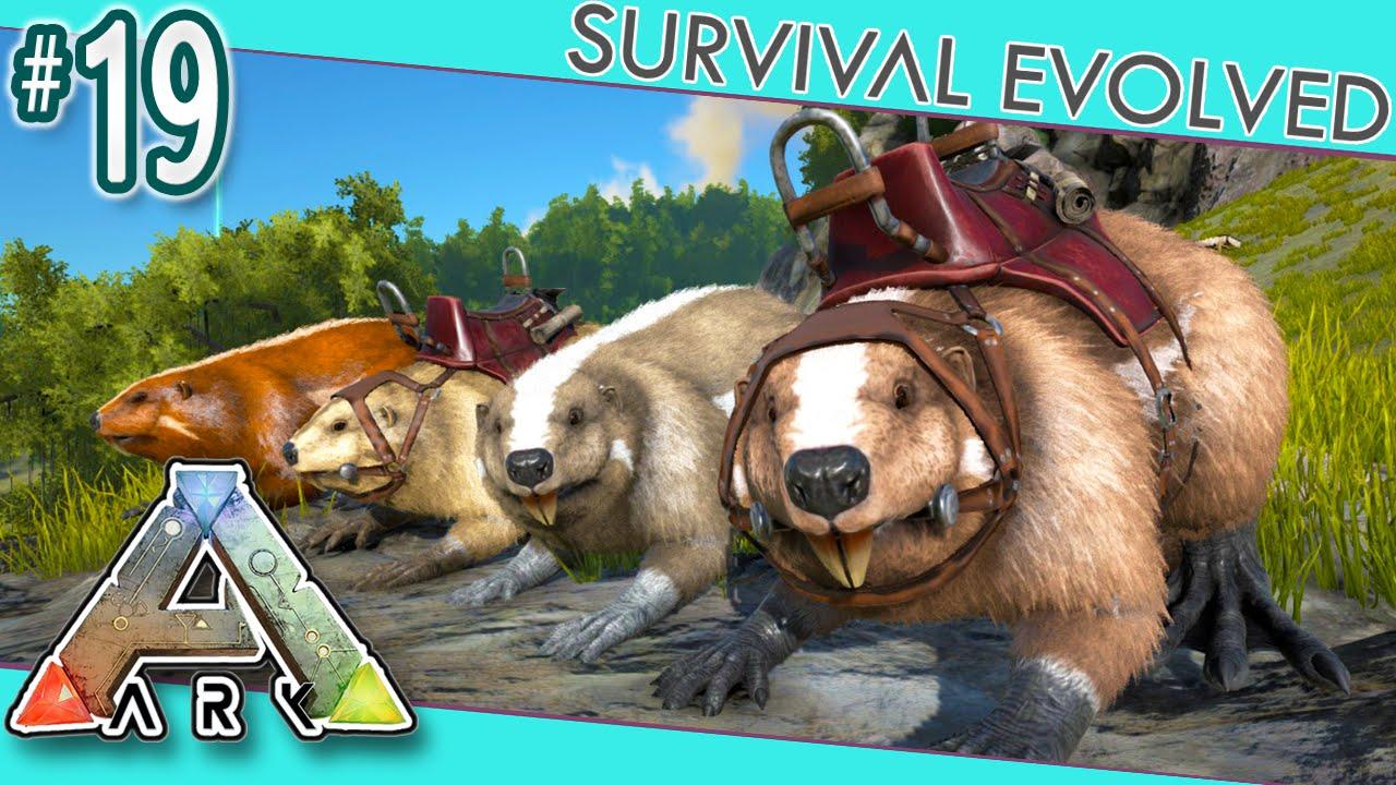 Beaver Sanctuary   Ragnarok - ARK:Survival Evolved Map ...   Ark Beaver Dam
