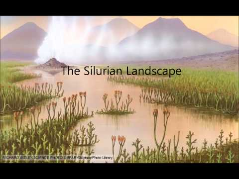 The Silurian Period