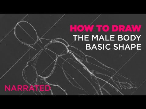 How to Draw the Male Body - Basic Shape (Narrated)