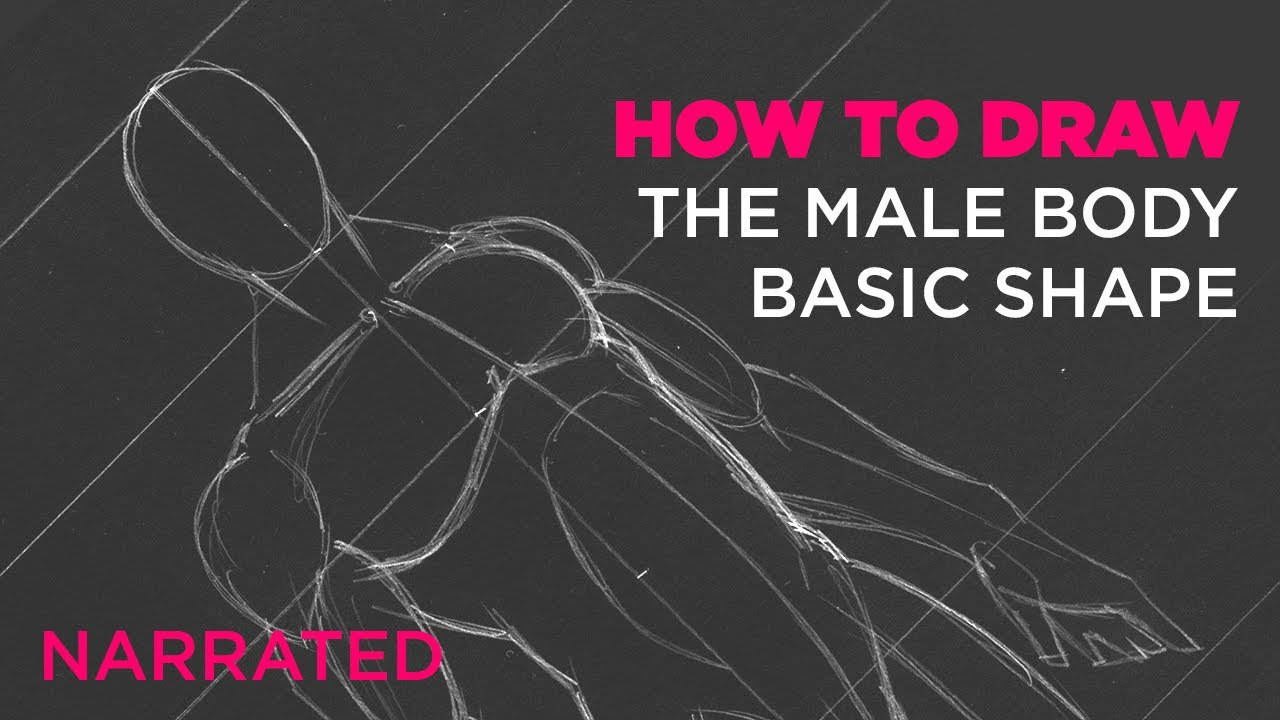 How to Draw the Male Body - Basic Shape (Narrated) - YouTube