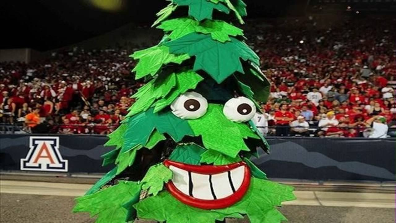 Image result for stanford mascot