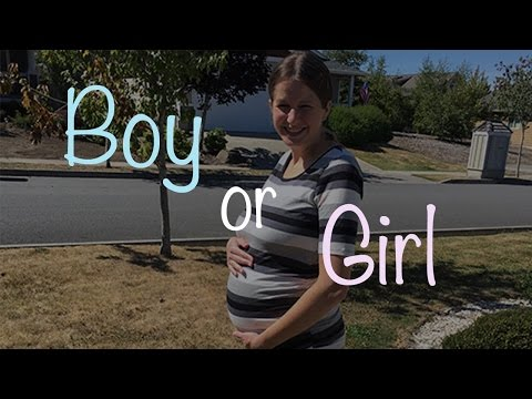 19/20 Week Bumpdate: Skull Theory and Nub Theory Gender Reveal!