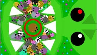 MOPE.IO ONE KILL CHALLENGE *99.9% FAIL* NEW UPDATED MOPE CHALLENGE FUNNY MOMENTS (Mope.io Gameplay)