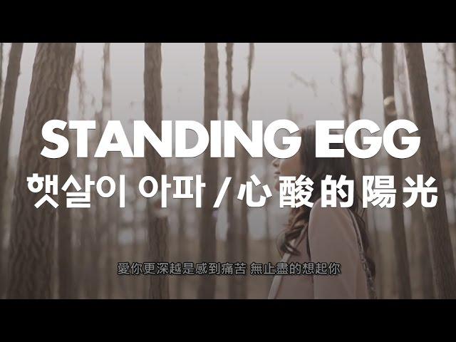【繁中字】Standing Egg - 刺眼的陽光 / 햇살이 아파 (with. 한소현)